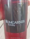 BumgarnerBumbly_04.jpg